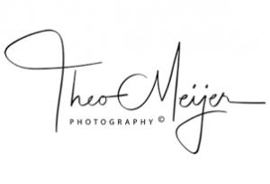 Theo Meijer